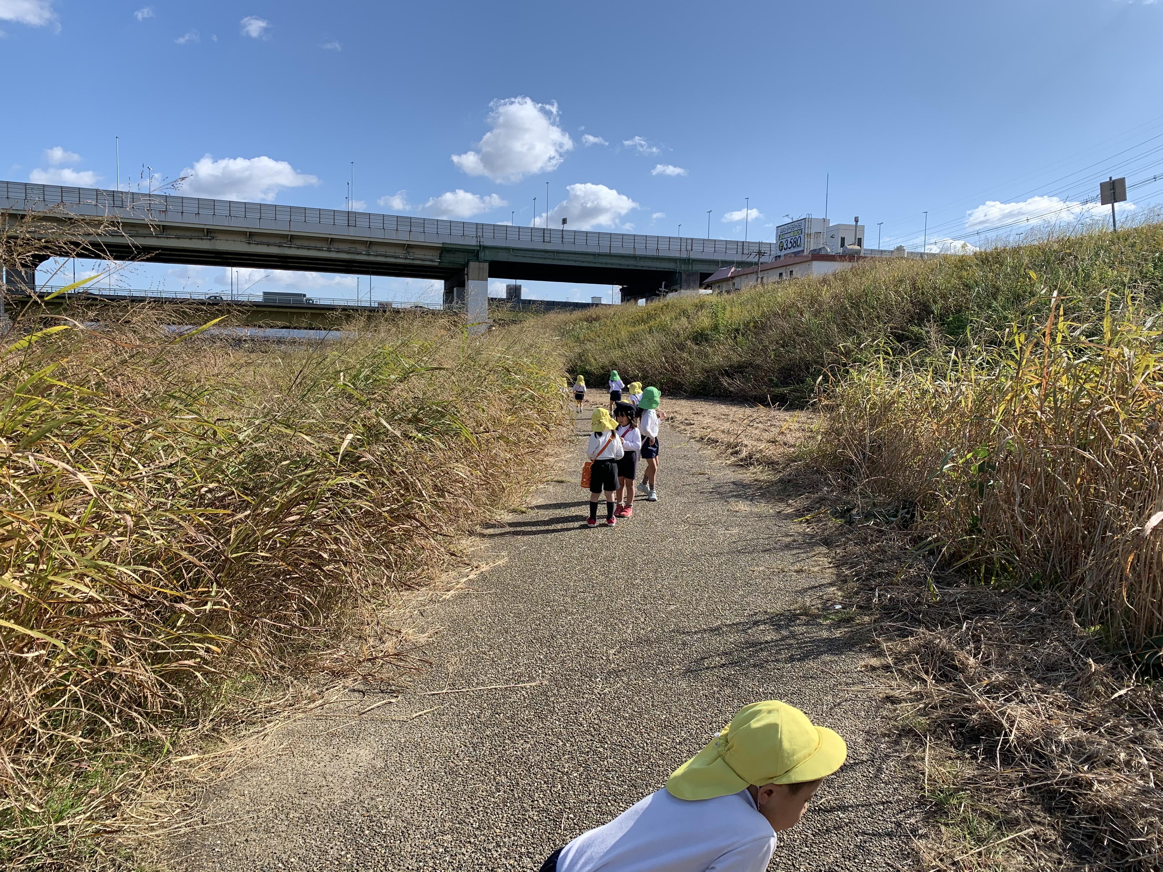 散歩~大和川まで~(カリーノ保育園)