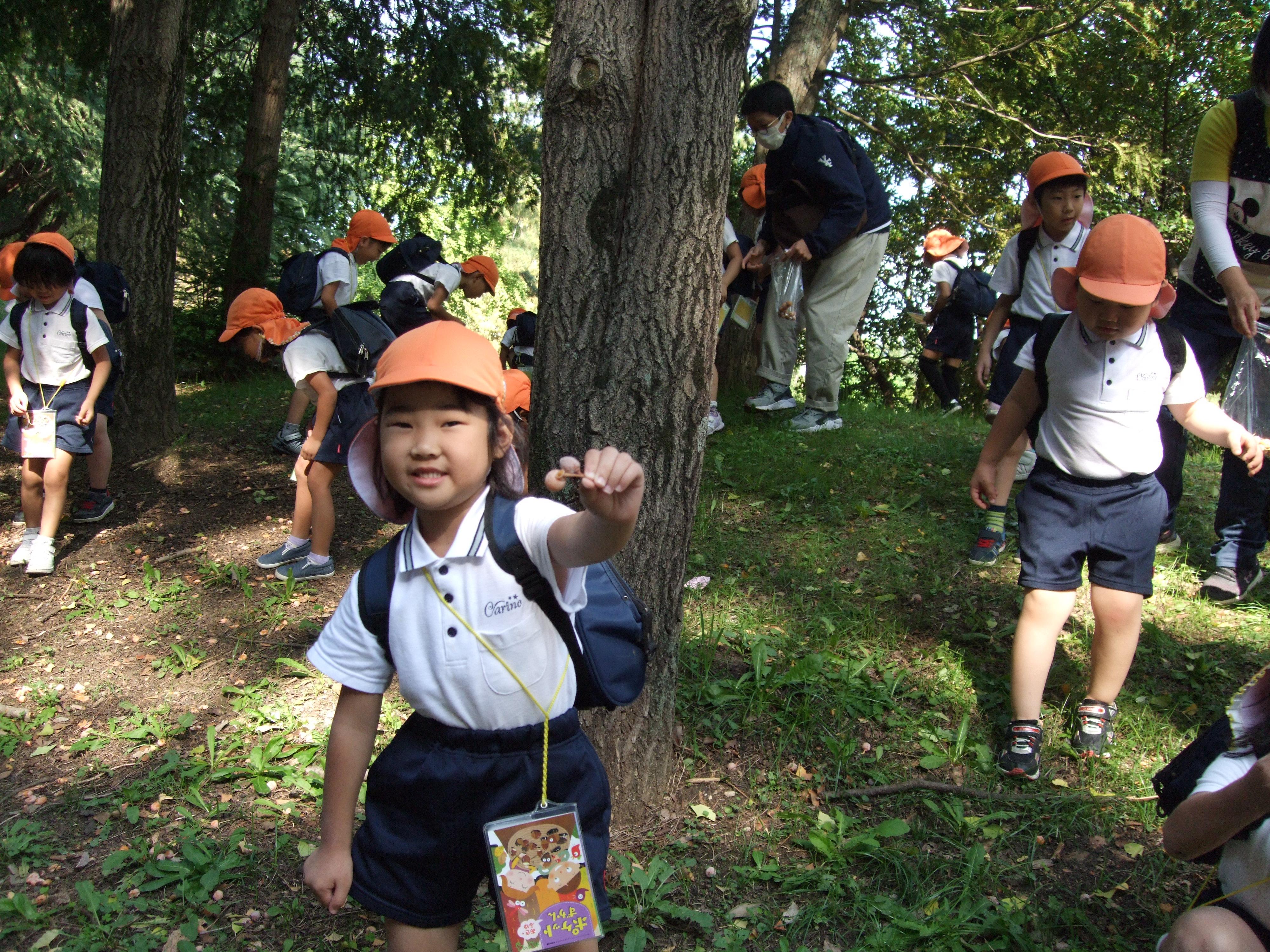 3・4・5歳児秋の遠足(松原カリーノ保育園)